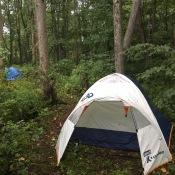 Intrepid Campers