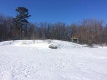 Bunkie in Winter