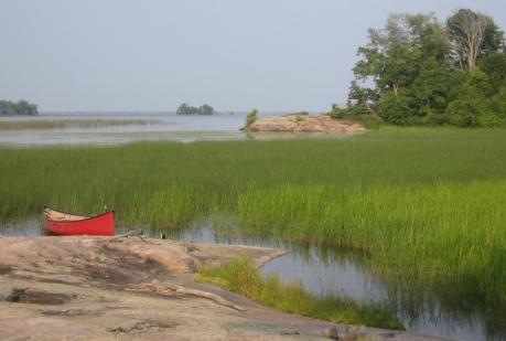 Pretty Reed Bays