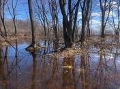 Spring Flooding